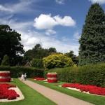 The Wisley Garden – London