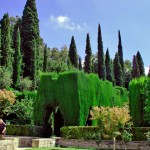 The Gardens Of Feasts