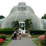 The Palm House At Kew Garden