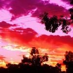 LIGHTNING RIDGE, Australia