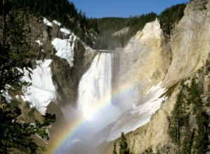 Calm Falls at Yellowstone National Park